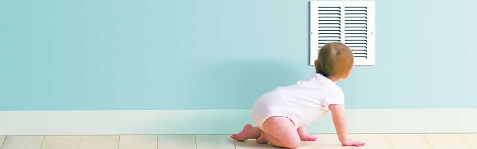 Sunset Air and Home Services - Indoor Air Quality - Moldy Baby BG