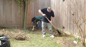 Clean Up Yard Debris - southwest florida - 300 x 165