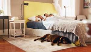 couple sleeping with dog on floor – Coronavirus and UV lights - Fort Myers - Sunset Air & Home Services