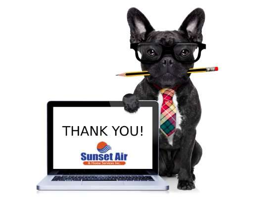 Dog holding sign– our customers' stories - Fort Myers - Sunset Air & Home Services