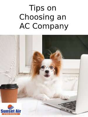 Dog with glasses on computer – Tips on choosing an AC company - Sunset Air & Home Services – Fort Myers