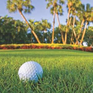 Golf ball on green with palm trees-5 Reasons to avoid DIY AC Repairs-Sunset Air and Home Services-Fort Myers-300x300jpg