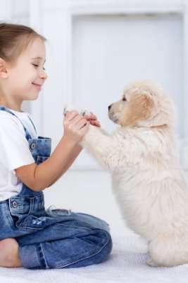 Young girl high fiving her puppy in home---Sunset Air and Home Services–Fort Myers-267x400jpg- ways to extend the life of your AC part 2 of 2