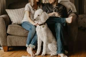 Couple On Couch With 2 Pets - Sunset Air and Home Services - Fort Myers