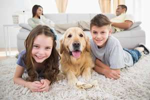 Happy Family With Dog - AC Tips for any Season Part 2 of 3 - Sunset Air and Home Services - Fort Myers