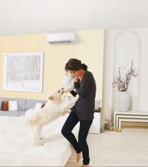 Mini Split Unit on wall with woman and dog playing-Sunset Air and Home Services-Fort Myers FL-300x339