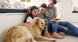 dog with family-Sunset Air and Home Services-Fort Myers-300x161jpg