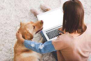 Dog and lady on laptop on floor-How To Hire The Best AC Service (Part 2 of 2)-Sunset Air and Home Services-Fort Myers-300x200